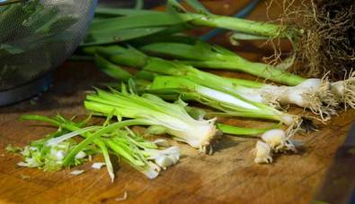Photo of several leeks in stages of prep: whole, without roots, split, washed, cut